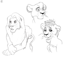 Lion King Sketches by Radiius