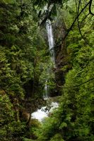 Waterfall in Lynn Canyon Park by jadennyberg