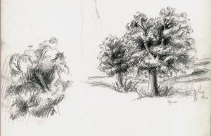 trees sketch by Magdusia