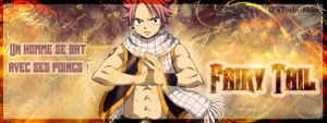 Fairy Tail by Toshi-Shu