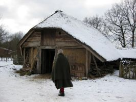 Medieval farm in winter by paganroots