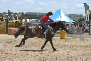 Taupo Rodeo 196 by Sooty-Bunnie