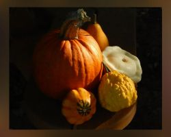 Fall Pumpkin and Gourds by Artlune