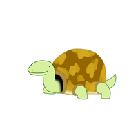 This is my turtle. by SpacePie