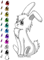 Bunny Template by Psunna