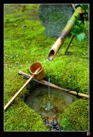 water in the garden by tensai-riot