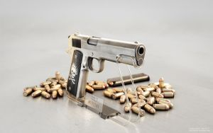 Colt on white by ABiator