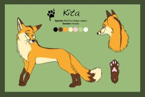 Reference Sheet - Kita by Saffhire-Phoenix