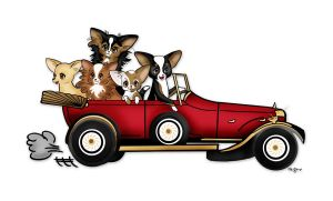 Chihuahuas in a Roadster by msmickimac