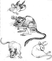 mouselope concept sketches by boot-cheese-3000