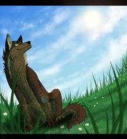 Com - Look at that beautiful sky by whicray