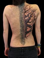 Tree 2.Session by Anderstattoo
