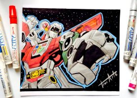 Voltron  by TruiArts