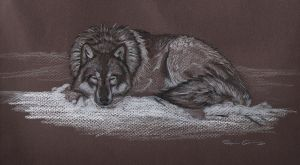 Wolf Snow Nap by bloodyvampire18