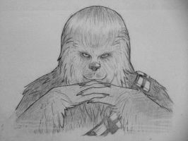 We meet again Mr. Wookie by chennanigan