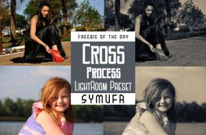 CROSS PROCESS LIGHTROOM PRESETS  0008 by symufa