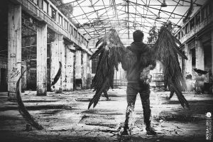 Fallen Angel (B/W) by Roy-Ba