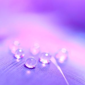 Droplet dreams by pqphotography