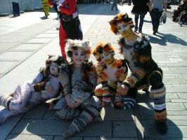 MCM Expo: A bunch of Soft Kitty' by LabyrinthLadyLover