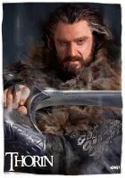 Thorin II Oakenshield by Paganflow