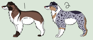 Australian Shepherd Point Adopts -CLOSED- by PoodleFradoodle