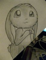 Bunny :3 by myheartyoung