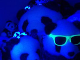 Panda rave by pandaman27