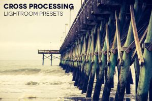 Cross Processing Lightroom Presets by photographypla-net