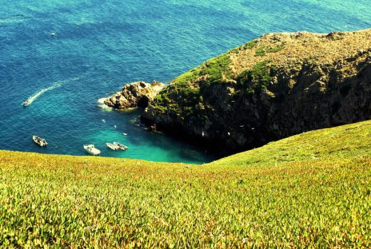 Berlengas I by nicas999