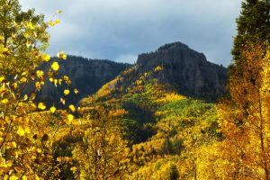 Late afternoon gold in the Cimarron Mountains by AGalWithACamera