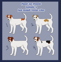 JRT Litter - #3 ON HOLD by ZAR-kennels
