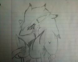 5th Gen PKMN, Zoroark by AnchoredWithADragon