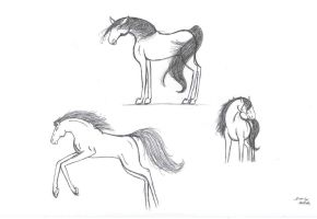 Random Horse Sketches by spiderling00