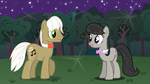 A Very Lovely Night by SapphireSkies24