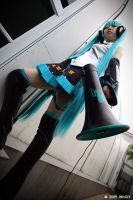 Hatsune Miku - Love is War V by roxwindy