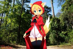 Little Red Riding Wolf by JKase911