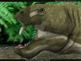 Eodicynodon oosthuizeni by Christopher252