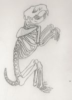 Mouse Skeleton by katriel