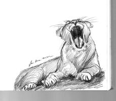 mandatory daily cat sketch 1754 by nosoart