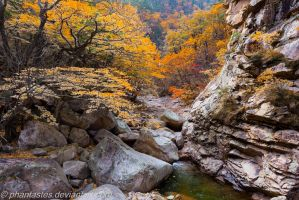 Seoraksan National Park 3 by phantastes