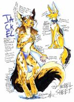 Jackel's Model Sheet by SummerJackel