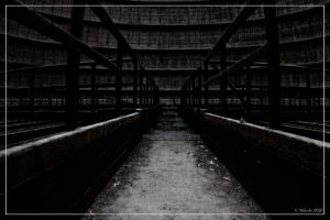 The path to the wall by 0-Photocyte