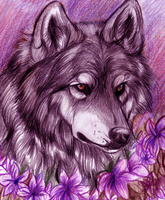 Purple flower by TheMysticWolf