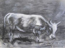 Cow 6 by hollrock