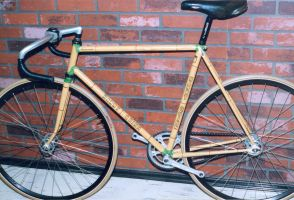 Bamboo Track-bike by fuzzymutt