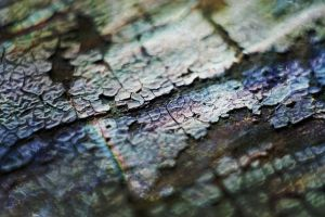 Texture 006 - Chipped Away by endprocess83