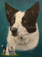 Bryn - Border collie portrait. by Canis-Lupess