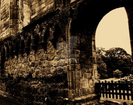 Abbey Wall. by Flo-CrazyBlonde