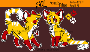 New Character: Sol by MissKittens