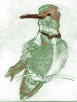 sketch of a Humming bird by FireDestined4